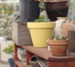 Improve Your Garden's Overall Look With These Simple Tips!