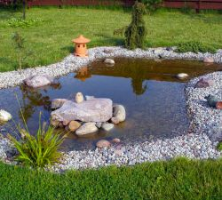 Where to Place a Garden Pond