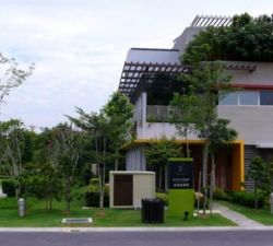 Environmentally Friendly Homes Are Worth Considering
