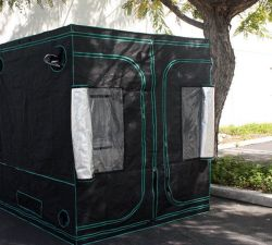 Everything You Need to Set Up a Grow Tent