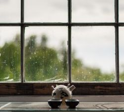 Is it Time to Replace Your Windows? Here Are 5 Common Warning Signs