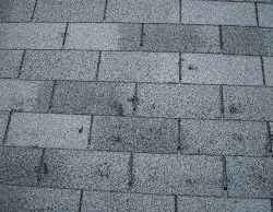 Understanding Hail Damage to Your Roof