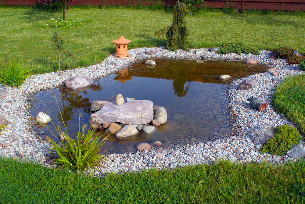 Where to place a garden ponddattalo dattalo for The garden pool