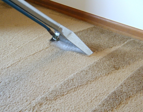 How-To-Steam-Clean-Your-Carpet