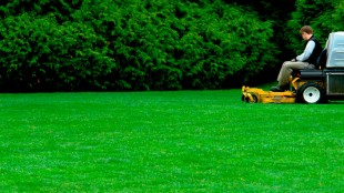 advantages-of-hiring-a-specialist-in-lawn-care-services-in-yonkers-ny